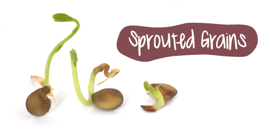 sprouted_grains